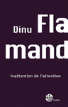 Inattention de l'attention (Dinu Flamand)